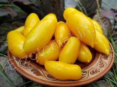 Томат «Banana Legs» (Банановые ноги)