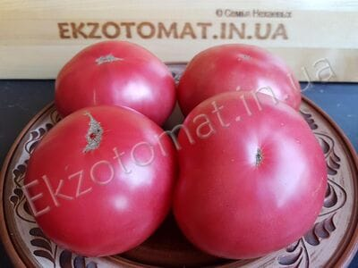 Tomato 'Honey'