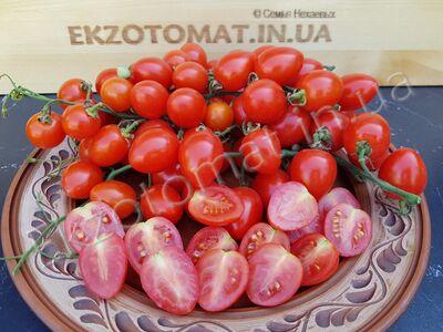 Томат «Tomatoberry»